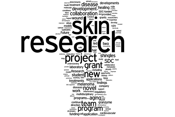Word cloud: research, skin, project, grant, program, etc.