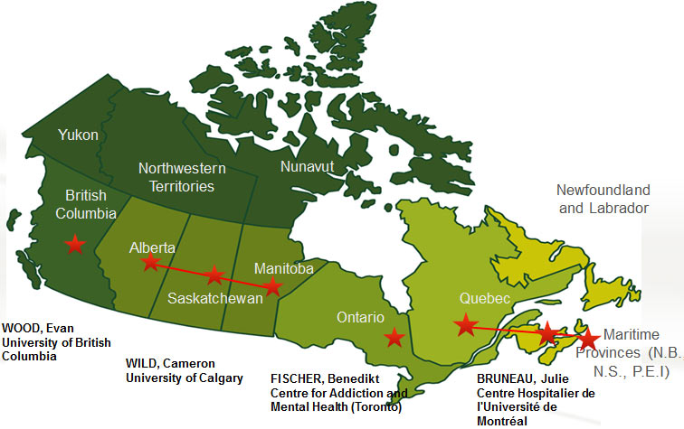 Canadian Research Initiative in Substance Misuse CRISM CIHR