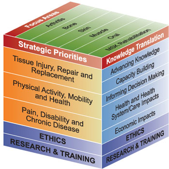 Figure 1: IMHA's focus areas, priorities and KT goals